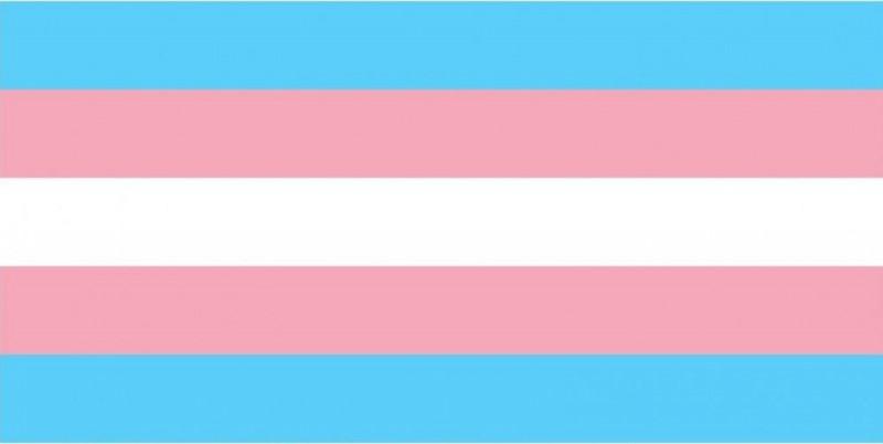 [NOTA DE PESAR - Tabata é mais uma vítima de transfobia]